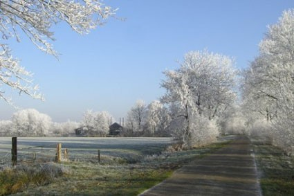 1385 garyp winter in de Broek